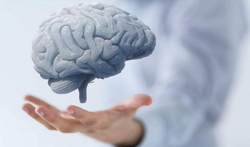 Tips & Exercise to Improve Your Memory